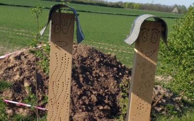 Bienenstelen für den insektenfreundlichen Garten